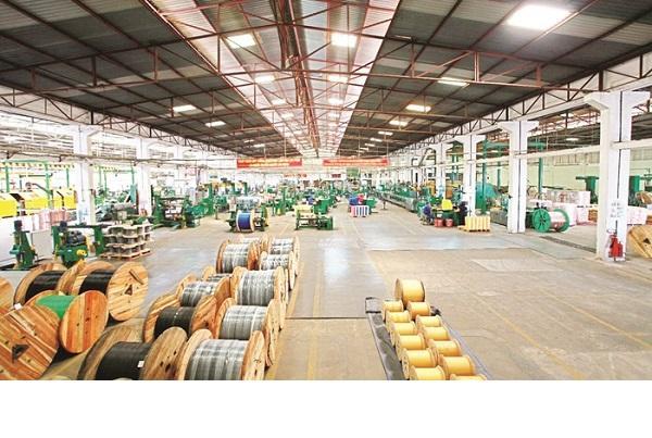 Dây cáp điện có vai trò vô cùng quan trọng trong các hoạt động sản xuất tại Hải Phòng